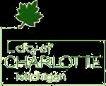 Charlotte City Logo